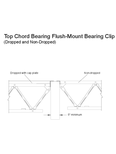 Top Chord Bearing Flush-Mount Bearing Clip (Dropped and Non-Dropped) Thumbnail