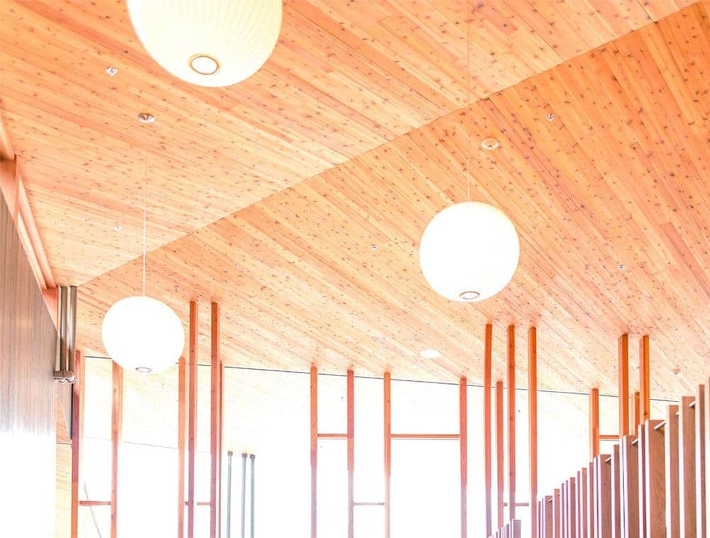 Beautiful wood grain covers roof trusses in a bright space